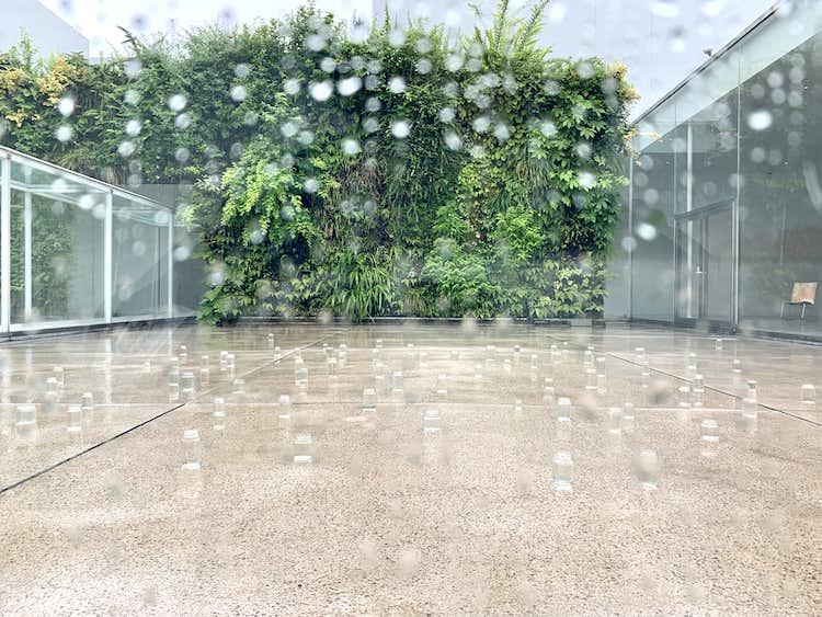 内藤礼 うつしあう創造」が金沢21世紀美術館で開幕。過去最大規模の ...