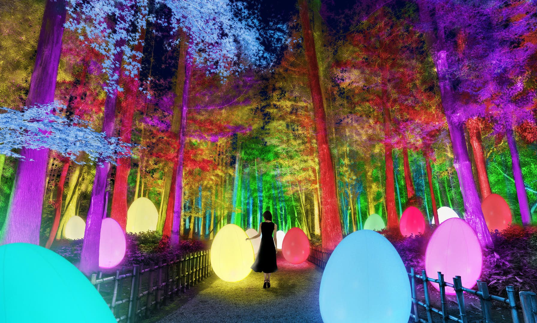 チームラボ 偕楽園 光の祭」が2021年2月に開催。3000本の梅が咲き誇る、光のアート空間に|美術手帖